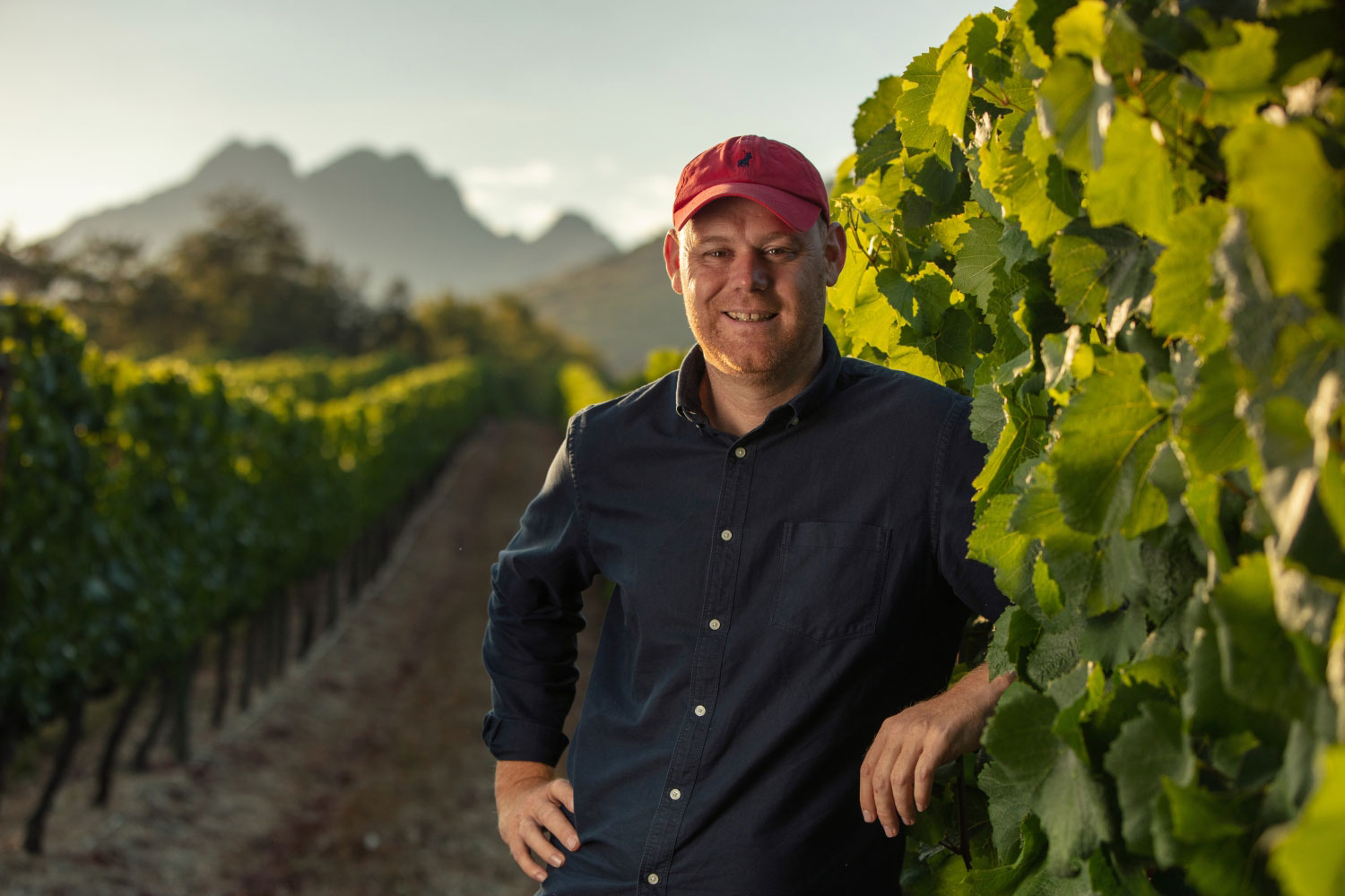 Morne Vrey standing in the vineyards of Delaire Graff Estate