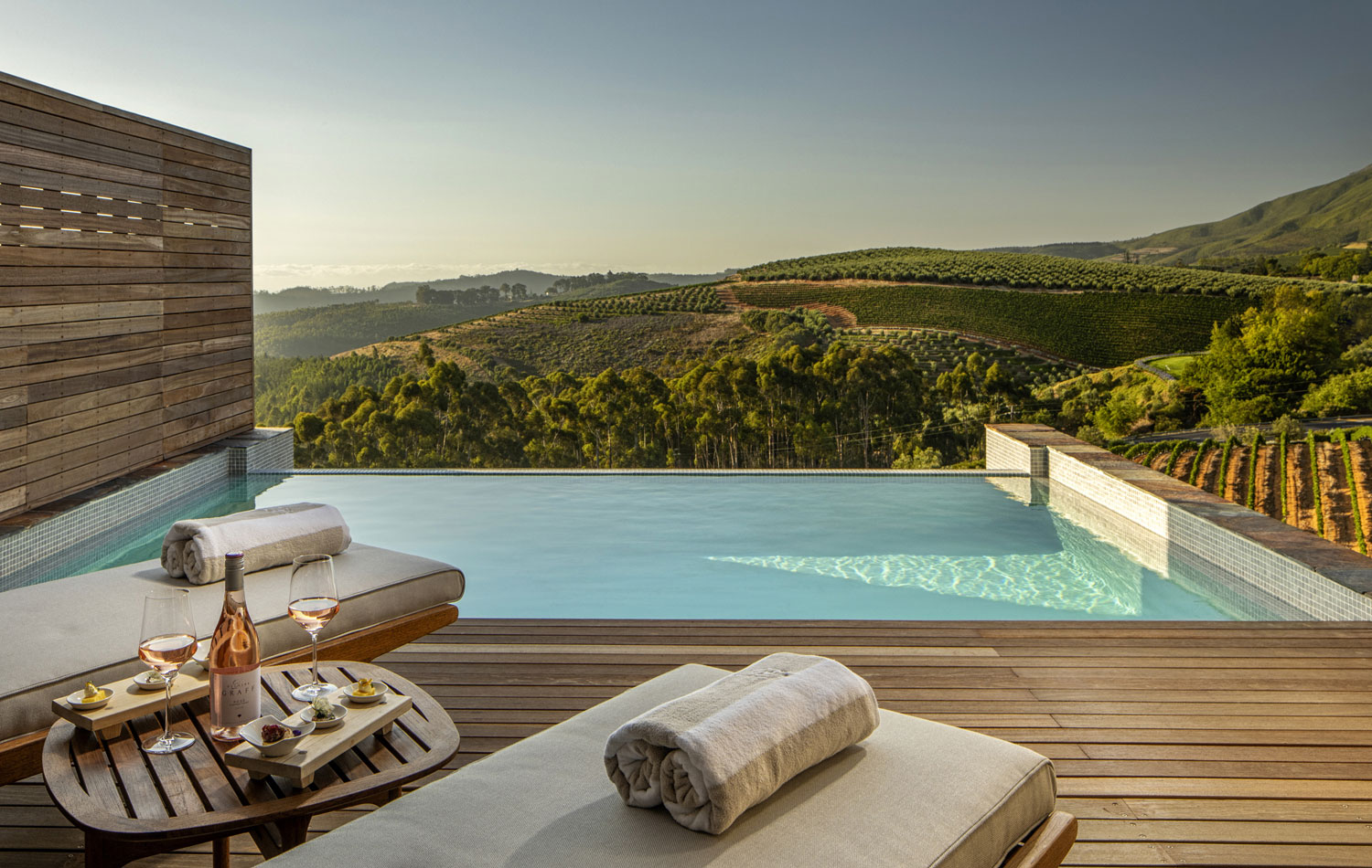Superior Lodge terrace with plunge pool overlooking vineyards