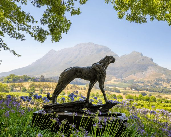 A-botanical-paradise-Dylan-Lewis-Cheetah-Sculpture